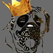 Top Dog Collection Art Print