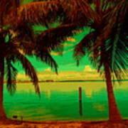 Tropic Nite Art Print
