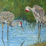 Two Cranes Art Print