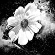 Universal Floral Art Print