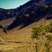 Valley Of Fire Nevada Art Print