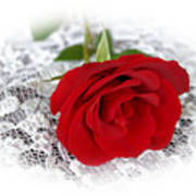 Victorian Rose Art Print