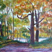 View From My Driveway Art Print