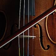 Violin Art Print by Nichola Evans