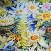 Water Garden Art Print by Ann  Nicholson