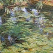 Water-lilies Art Print