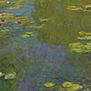 Water Lily Pond Art Print