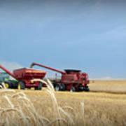 Wheat Harvest 2016 Art Print
