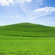 Windows Xp Art Print