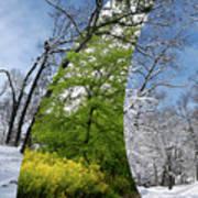 Winter And Summer Art Print