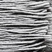 Wool Scarf Art Print