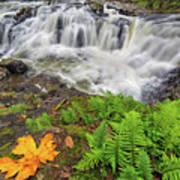 Yacolt Falls In Autumn Art Print