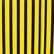 Yellow And Black Stripes Art Print