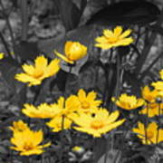 Yellow Lust Art Print