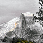Yosemite Half Dome Art Print
