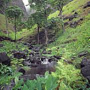 100181 Awaawapuhi Creek Na Pali Coast Art Print