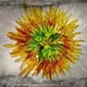 11262 Flower Abstract Series 02 #16a Art Print