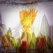 11322 Flower Abstract Series 03 #20 Art Print