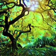 12 Abstract Japanese Maple Tree Art Print