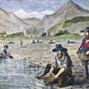 California Gold Rush Art Print
