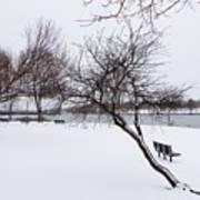 Obear Park In Winter Art Print