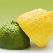 12 Organic Lemon And 12 Lime Art Print