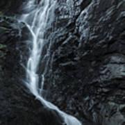 Cedar Creek Falls In Mount Tamborine Art Print