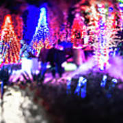 Christmas Light Bokeh At Daniel Stowe Gardens Belmont North Caro Art Print