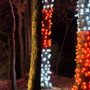 Christmas Season Decorations And Lights At Gardens Art Print