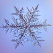 Snowflake Art Print