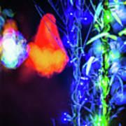 Christmas Season Decorations And Lights At Gardens Art Print