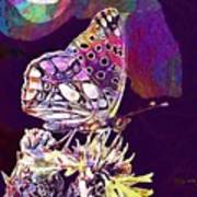 Insect Nature Live  Art Print