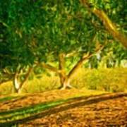 Nature Landscape Pictures Art Print