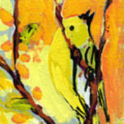16 Birds No 1 Art Print by Jennifer Lommers