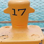 17 At Navy Pier Art Print