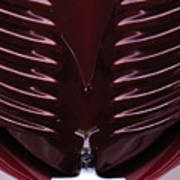 1938 Willys Grille Art Print