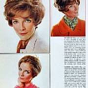 1960 70 Stylish Female Hair Styles Brown Mature Lady Art Print