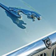 1995 Jaguar Xj6 Sedan Hood Ornament Print by Jill Reger