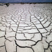 1a6832 Mud Cracks In Death Valley Art Print