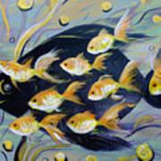 8 Gold Fish Art Print