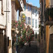 Alley - Provence Art Print