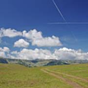 Alpine Meadow Art Print