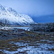 Arctic Reflections Art Print
