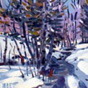 Aspen In The Snow Art Print