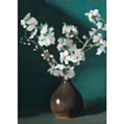 Australian Almond Blossom Art Print