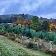 Autumn Colors In The Blue Ridge Mountains Art Print