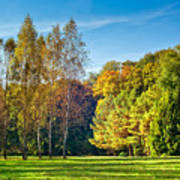 Autumn Colors Of Nature Art Print