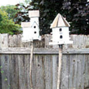 2 Bird Houses And A Fence Art Print