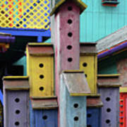 Birdhouses For Colorful Birds 3 Art Print