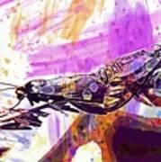 Black Butterflies Butterfly  Art Print